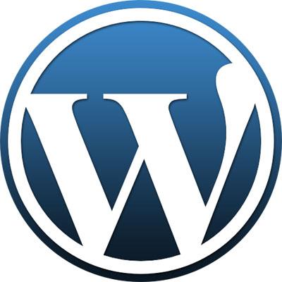 """【官方修改包测试中】Wordpress3.0对中文Tag糟糕的改动致使Google收录不能,提示""""重定向""""错误"""